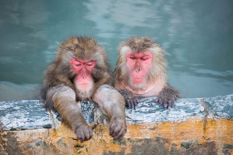 温泉入浴イメージ画像